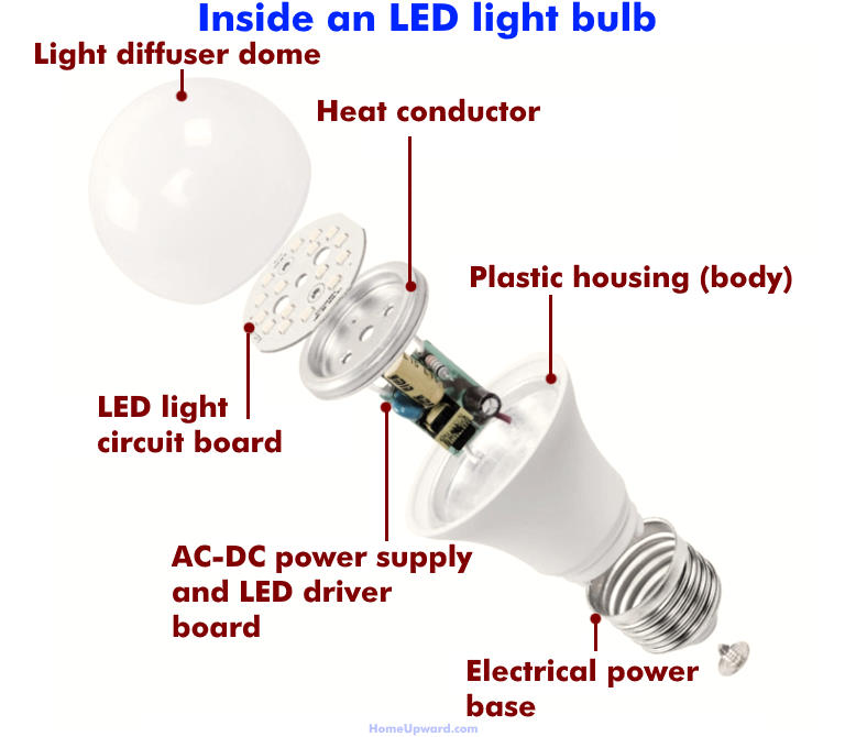 Illustrated diagram showing what is inside an LED light bulb
