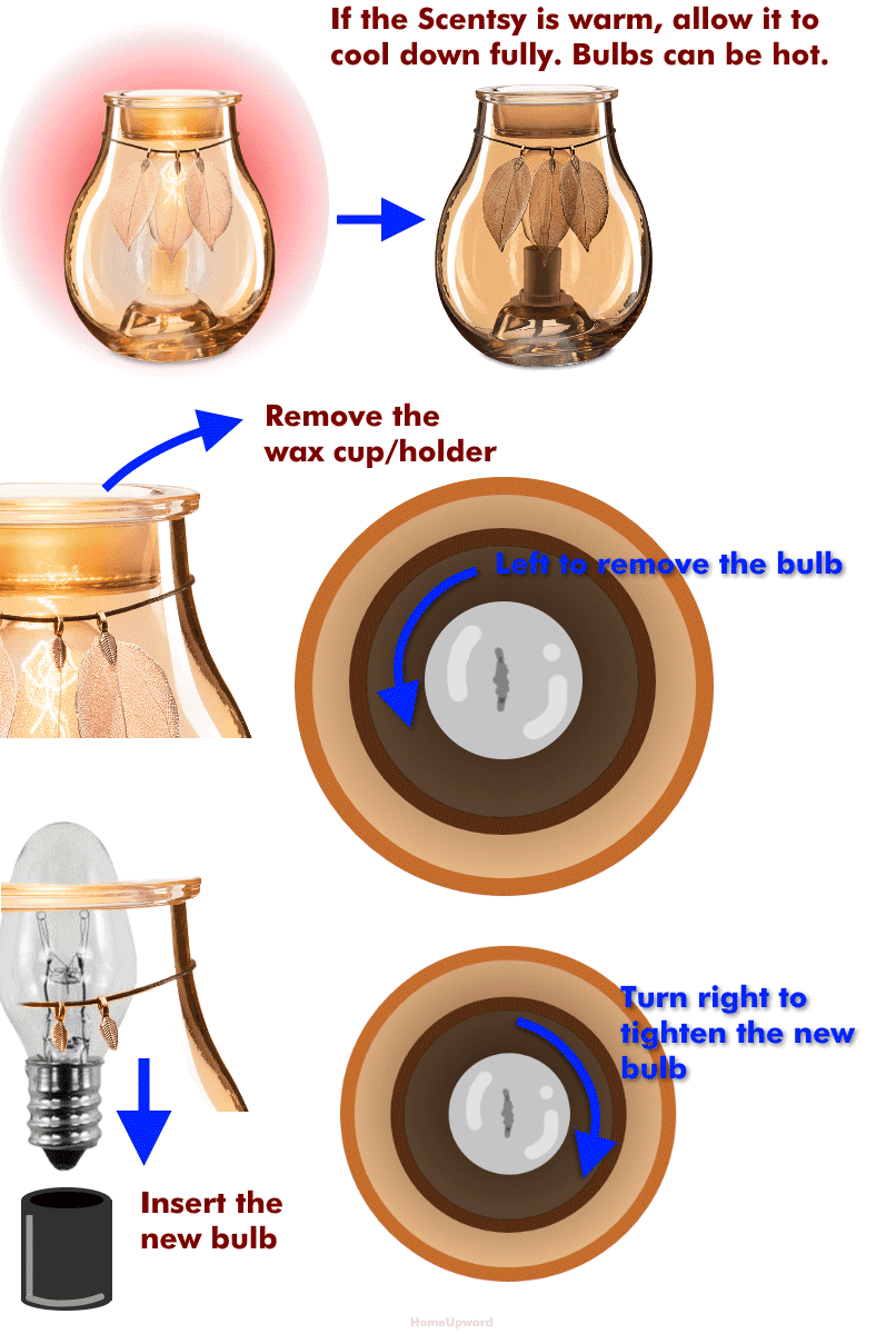 How to replace a Scentsy light bulb diagram