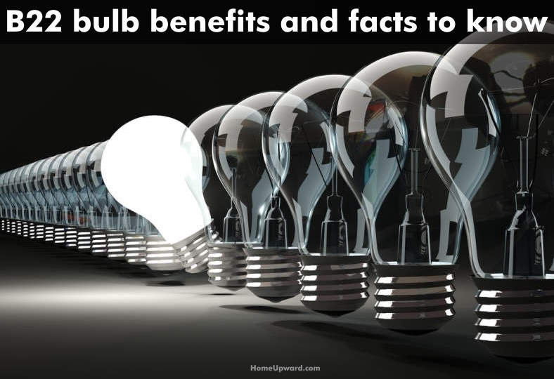 B22 bulb facts and benefits to know image