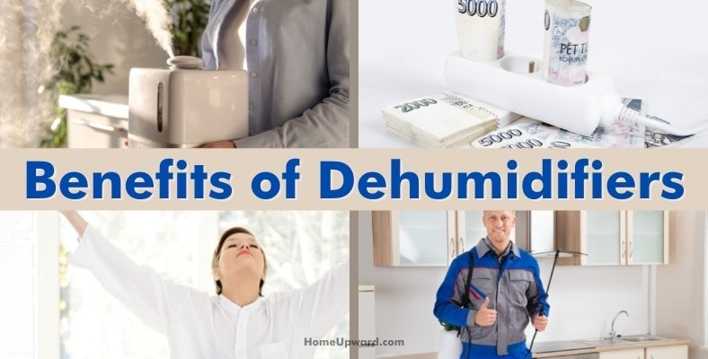 benefits of dehumidifiers