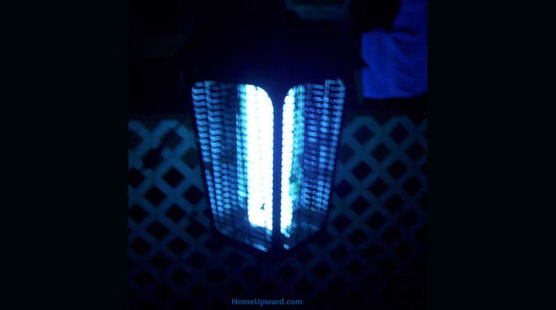 Bug zapper light at night example