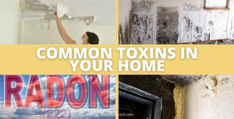 common toxins in your home
