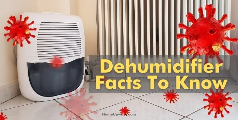 dehumidifier facts to know