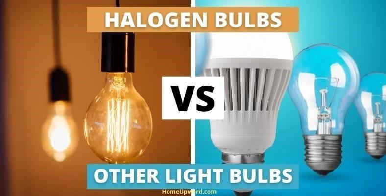 halogen bulbs vs other light bulbs