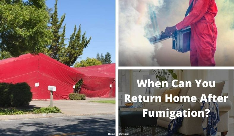 how long after fumigation is it safe to return home featured image
