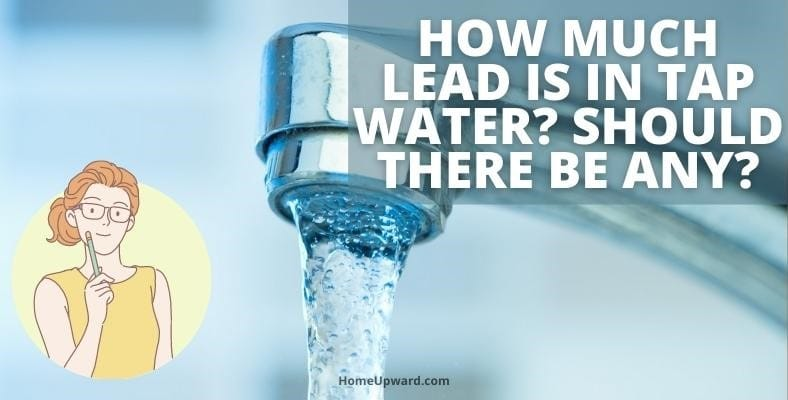 how much lead is in tap water should there be any