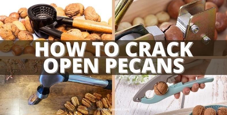 how to crack open pecans