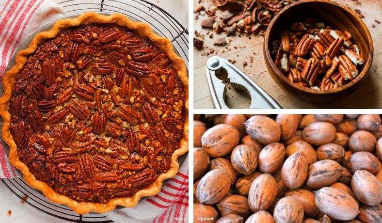 how to shell pecans at home featured image