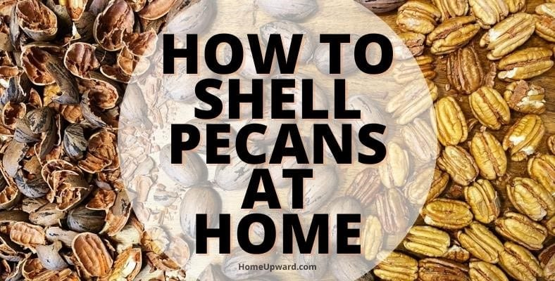 how to shell pecans at home