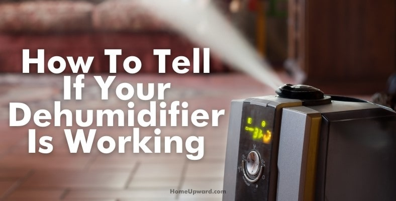 how to tell if your dehumidifier is working