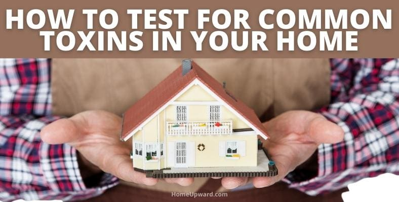 how to test for common toxins in your home