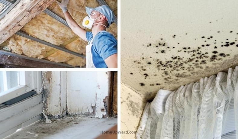 how to test for toxins in your home featured image
