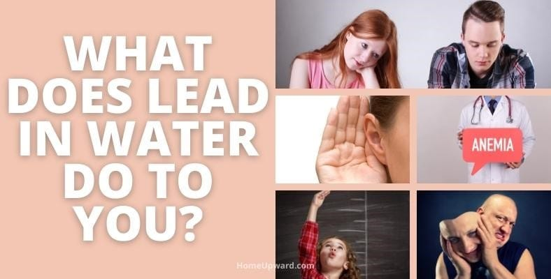 what does lead in water do to you