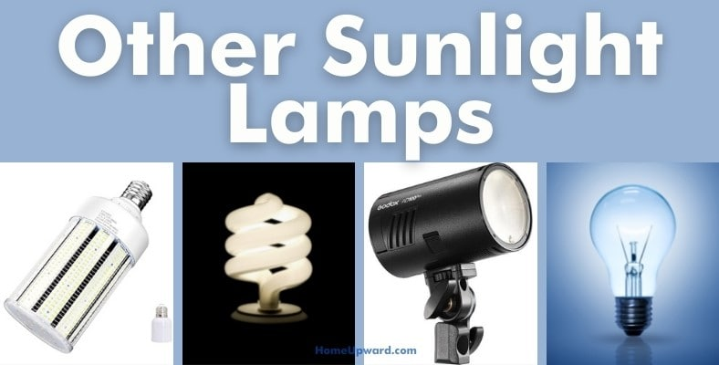 other sunlight lamps