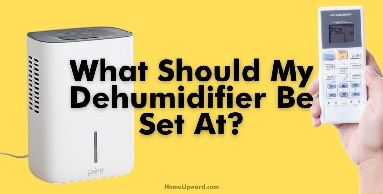 what should my dehumidifier be set at