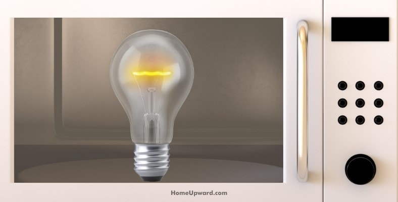 can you use an led bulb in a microwave