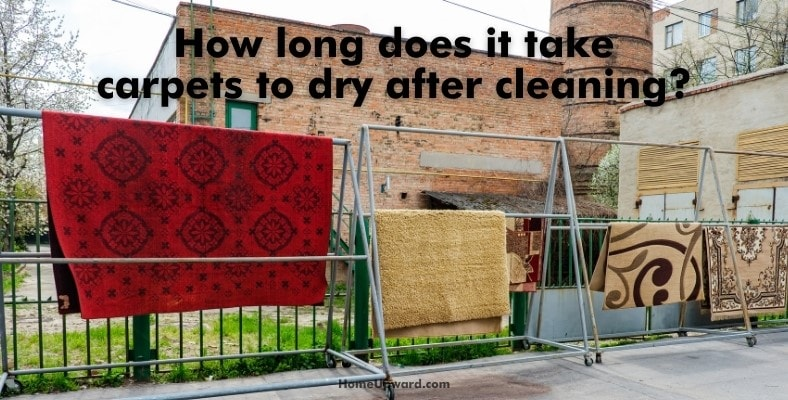 how long does it take carpets to dry after cleaning