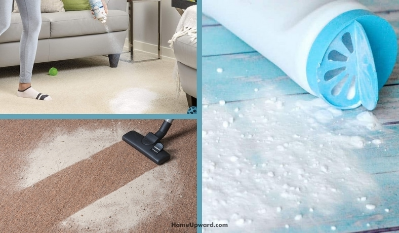 is a deodorizer necessary after carpet cleaning featured image