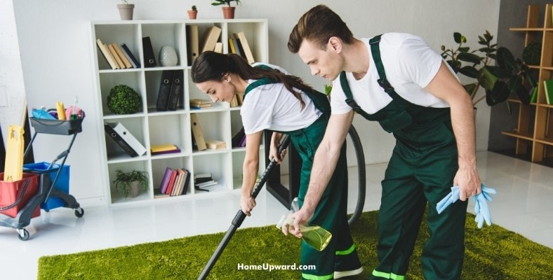is a professional carpet cleaning worth it