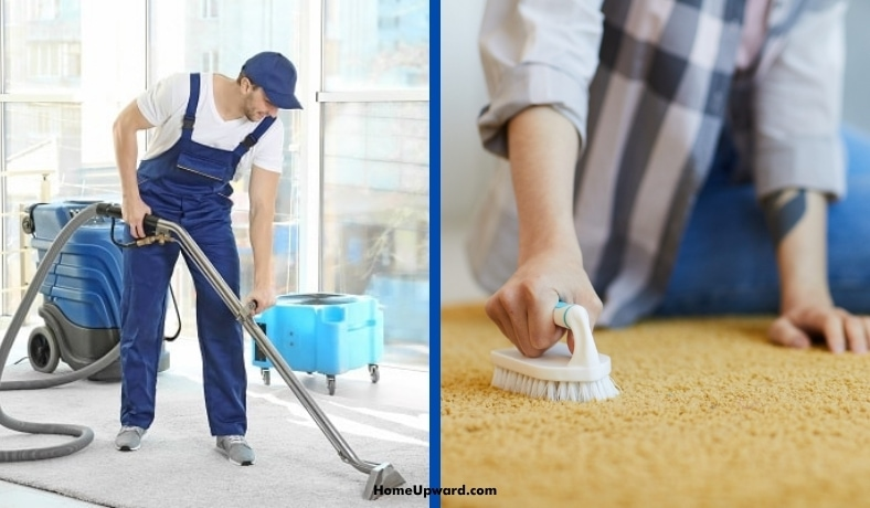 professional carpet cleaning vs doing it yourself what to know featured image