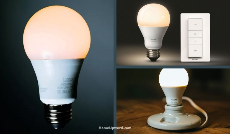 what are dimmable light bulbs featured image
