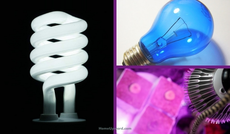 what are full spectrum light bulbs featured image