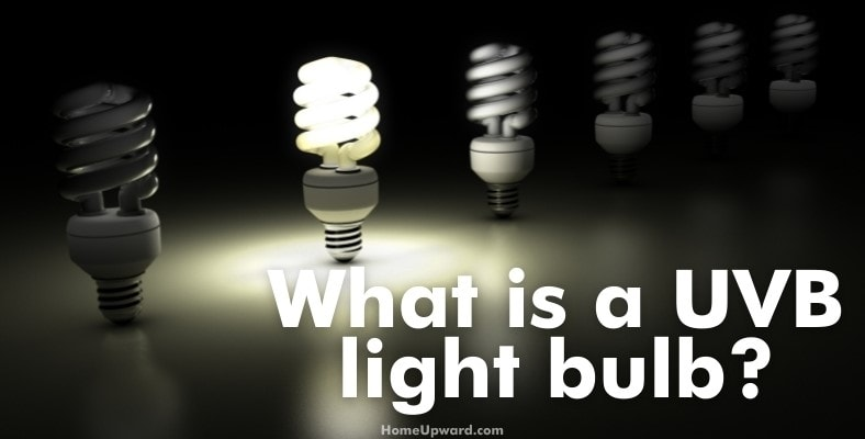 what is a uvb light bulb