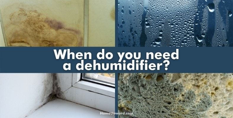 when do you need a dehumidifier