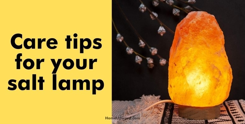 care tips for your salt lamp