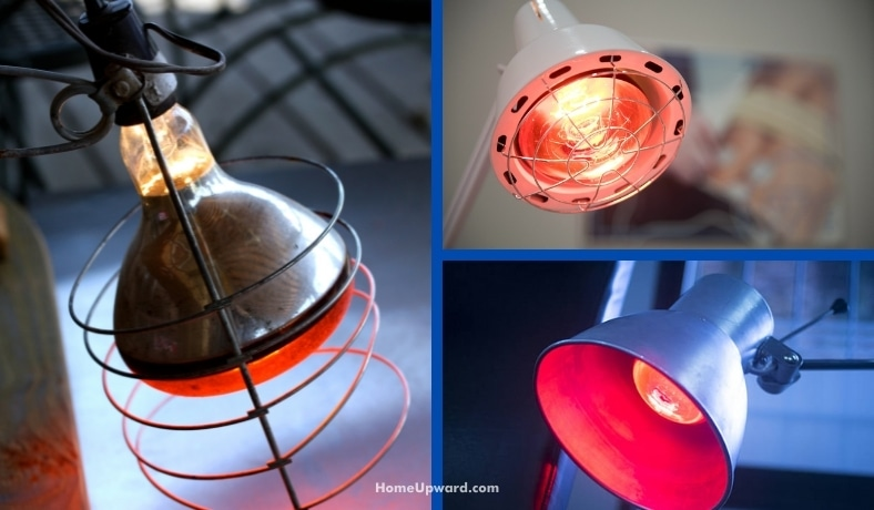 how much energy does a heat lamp use featured image