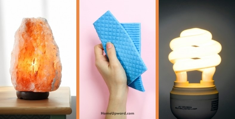 what to do if your lamp becomes wet